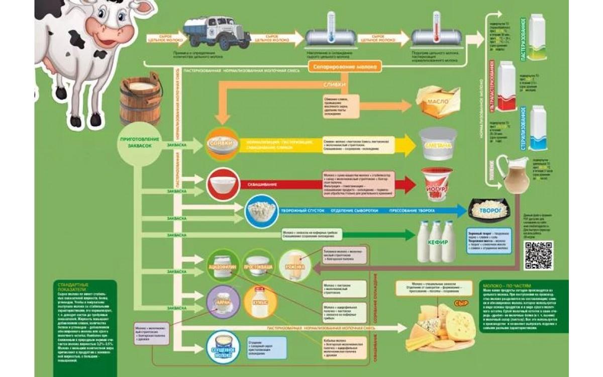 Технология производства и переработки молока на ки..