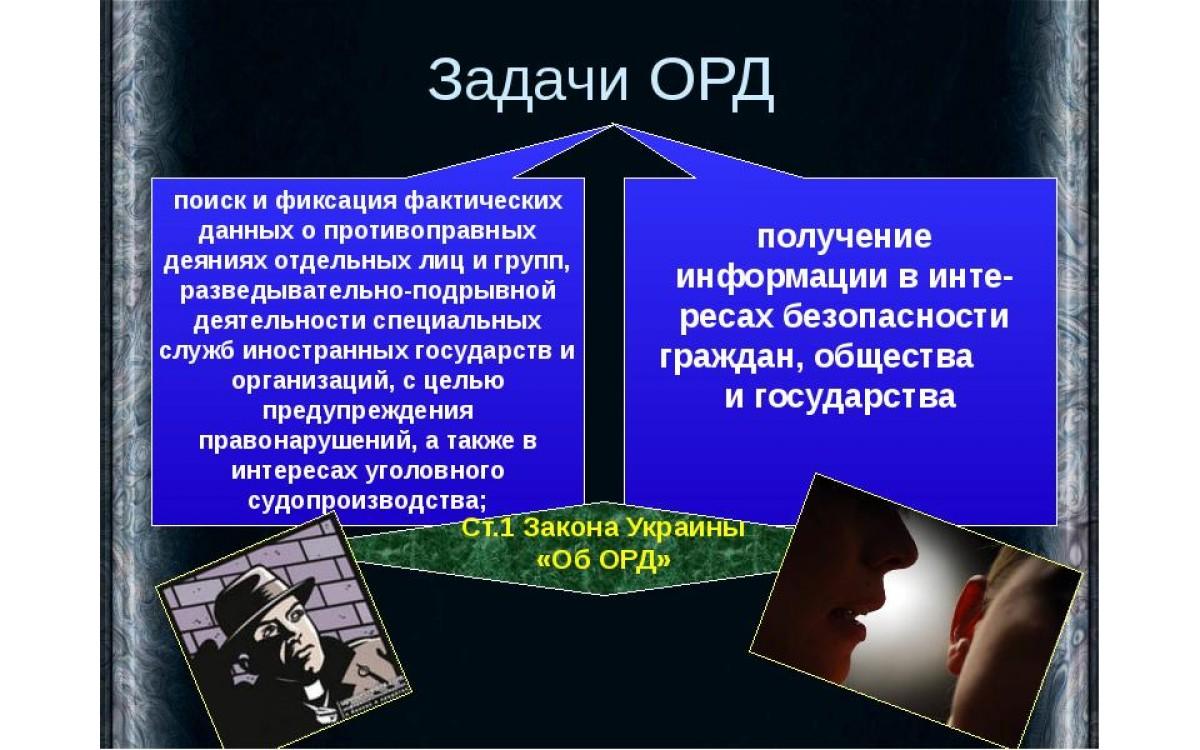 Природные зоны России, их особ..
