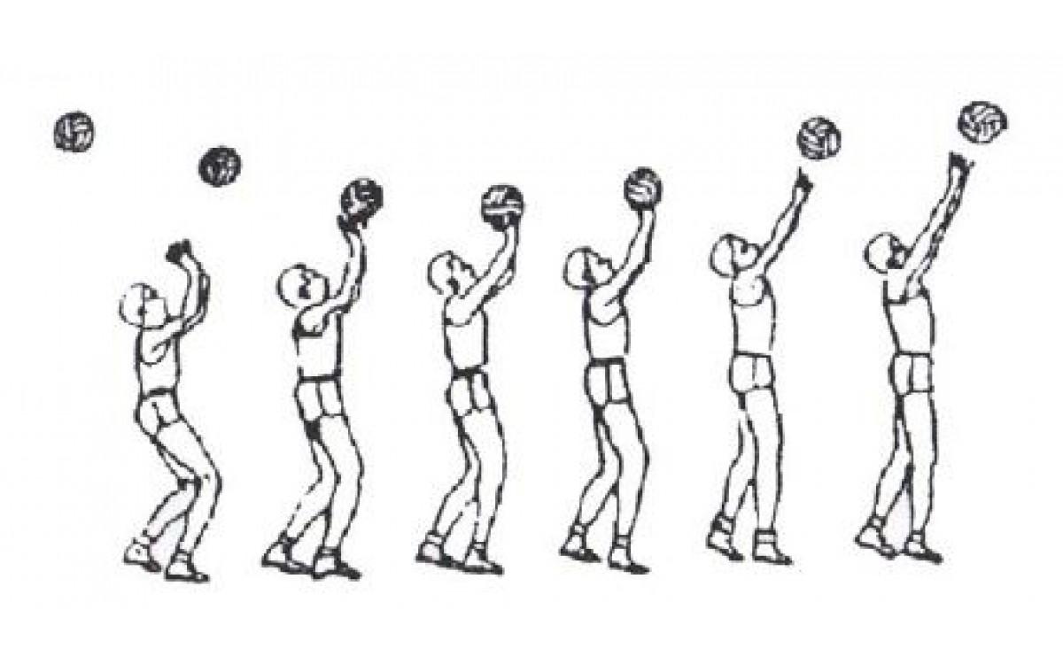 Методика обучения технике передачи мяча двумя рука..